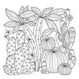 Página del colorante del vector Imagen linear en el cactus lindo del fondo blanco para la página para el libro de colorear Imagen