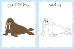 Página del libro de colorear para los niños preescolares con la morsa colorida Imagen de archivo libre de regalías