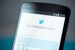 Página do início de uma sessão de Twitter no nexo 5 de Google imagens de stock