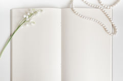 Página vacía del libro viejo con el espacio de la copia Fotos de archivo libres de regalías