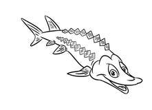 Páginas da coloração da ilustração dos peixes do esturjão Foto de Stock Royalty Free