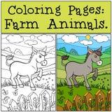 Páginas del colorante: Animales del campo Pequeño burro lindo Imagen de archivo