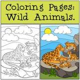 Páginas del colorante: Animales salvajes Jaguar de la madre con sus cachorros Fotos de archivo