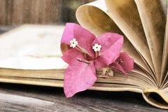 Páginas del vintage de un libro con estilo nostálgico del vintage de la flor imagenes de archivo