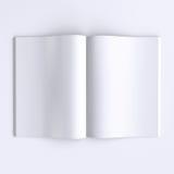 Páginas en blanco de la plantilla de un diario abierto, de periódicos o de libros Fotografía de archivo libre de regalías