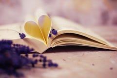 Páginas en forma de corazón del libro foto de archivo libre de regalías