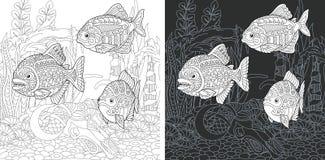 Páginas que colorean con los pescados de la piraña ilustración del vector