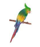 Pájaro Foto de archivo libre de regalías