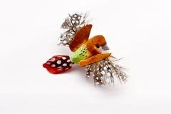 Pájaro agradable en blanco Imagenes de archivo