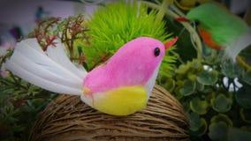 Pájaro artificial del capullo Fotografía de archivo