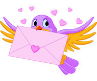 Pájaro con la carta de amor Fotografía de archivo libre de regalías