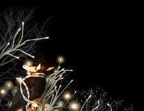 Pájaro con las cadenas ligeras Fotografía de archivo libre de regalías
