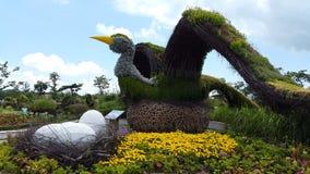 Pájaro de la hierba Imagen de archivo