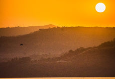 Pájaro de la montaña de la puesta del sol Imagen de archivo