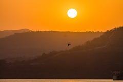Pájaro de la montaña de la puesta del sol Imagen de archivo libre de regalías