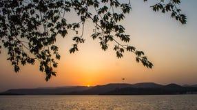 Pájaro de la montaña de la puesta del sol Fotos de archivo libres de regalías