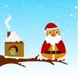 Pájaro de la Navidad Imágenes de archivo libres de regalías