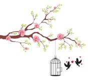 Pájaro de liberar de la jaula a su amante stock de ilustración