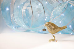 Pájaro de oro Imágenes de archivo libres de regalías