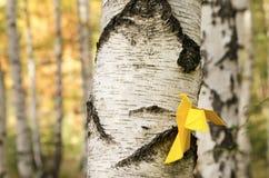 Pájaro de papel amarillo en un abedul Imágenes de archivo libres de regalías