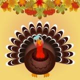 Pájaro de Turquía para la celebración feliz de la acción de gracias Foto de archivo libre de regalías
