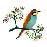 pájaro del Abeja-comedor en una rama floreciente con las bayas Ilustración del vector libre illustration