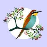 pájaro del Abeja-comedor en una rama floreciente con las bayas Ilustración del vector ilustración del vector
