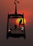 Pájaro del canto en jaula, contra el sol poniente Foto de archivo