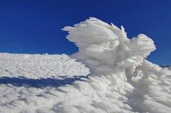 Pájaro del hielo Imagen de archivo