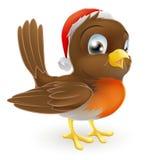 Pájaro del petirrojo en un sombrero de Santa Imagen de archivo libre de regalías