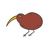 Pájaro dibujado mano del kiwi de la historieta del vector ilustración del vector