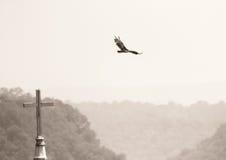 Pájaro e iglesia foto de archivo