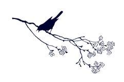 Pájaro en árbol de la ramificación stock de ilustración