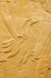 Pájaro en la mano Fotos de archivo