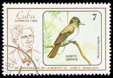 Pájaro en un sello Foto de archivo