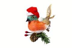 Pájaro en un sombrero rojo de Santa Claus El sentarse en los wi de un árbol de navidad Imágenes de archivo libres de regalías