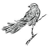 Pájaro en una rama, cartel del dibujo de la tinta ilustración del vector