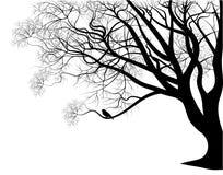 Pájaro en una ramificación de árbol ilustración del vector