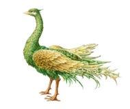 pájaro florístico místico del Hada-cuento Aislado en blanco Imagen de archivo