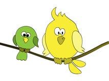 Pájaro gordo Fotografía de archivo libre de regalías