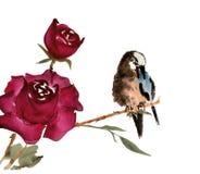 Pájaro hermoso en rama color de rosa Imagenes de archivo