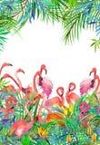 Pájaro, hojas y flores exóticos tropicales Imágenes de archivo libres de regalías