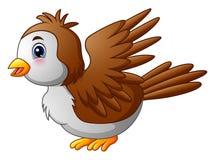 Pájaro lindo del petirrojo de la historieta ilustración del vector