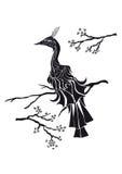 Pájaro negro y cereza oriental Foto de archivo
