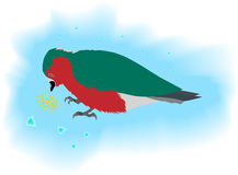 Pájaro que come el grano Fotografía de archivo
