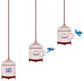 Pájaro que deja la jaula y la vuelta en la jaula Fotos de archivo libres de regalías