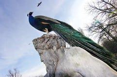 Pájaro que se sienta en una escultura antigua Imagen de archivo libre de regalías