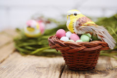 Pájaro que se sienta en una pequeña cesta Imagen de archivo libre de regalías