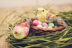 Pájaro que se sienta en una pequeña cesta Fotos de archivo libres de regalías