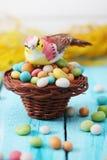 Pájaro que se sienta en una pequeña cesta Imagenes de archivo